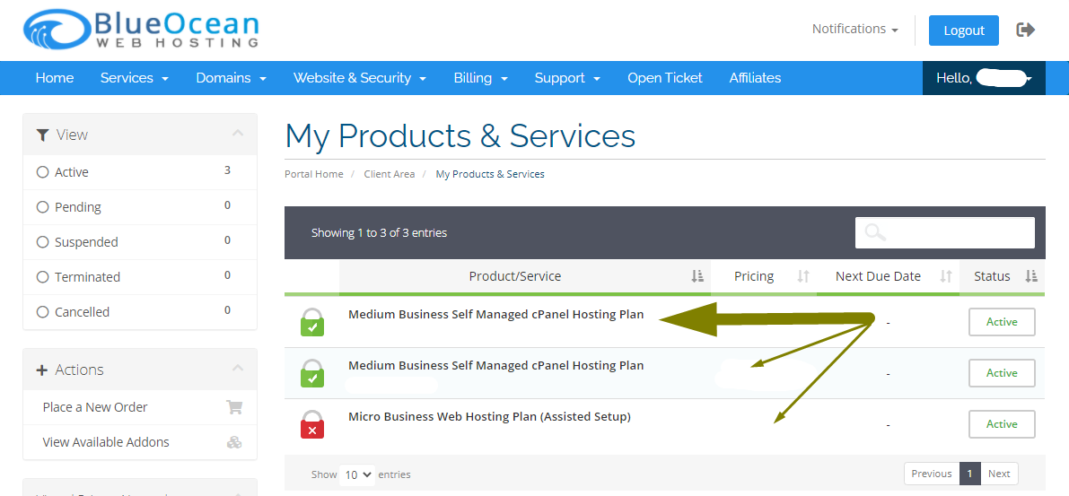 Billing Portal-My Products & Services - Blue Ocean Web Hosting